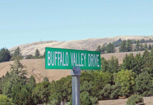 Street Sign: Buffalo Valley Drive