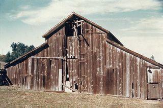 The Circle B barn circa 1968