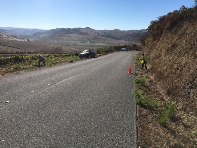 Stage Rd removal